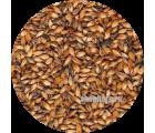 Солод ячменный Карамельный EBS 250 (Курский солод) 1 кг